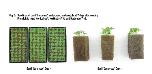 New Product Research – Horticubes® ES – Basil, Watercress, And Arugula